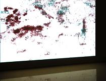 Digital Transformations - Codex Arabic and Hebrew at ISEA